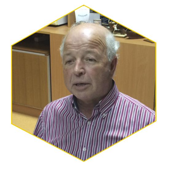 Manuel Rocha Teixeira Pinto