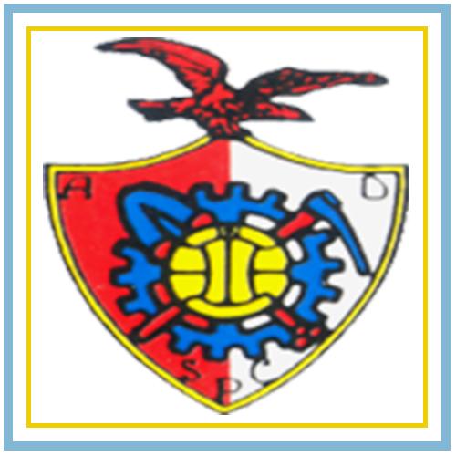 Associação Desportiva de S. Pedro da Cova