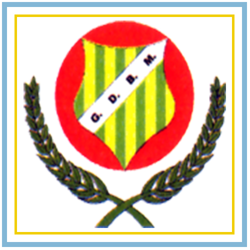 Grupo Desportivo de Baguim do Monte