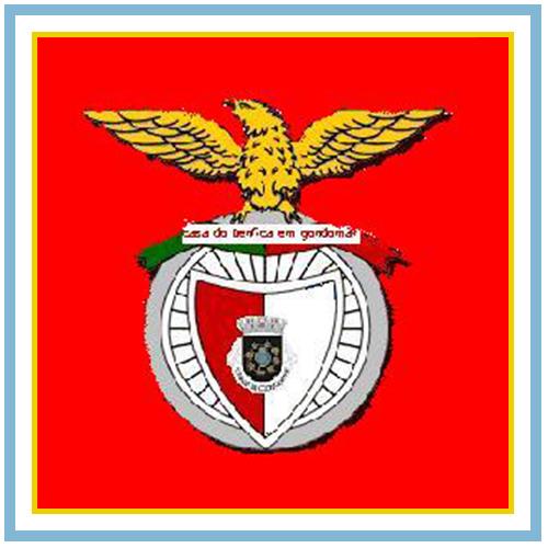 Casa do Sport Lisboa e Benfica em Gondomar
